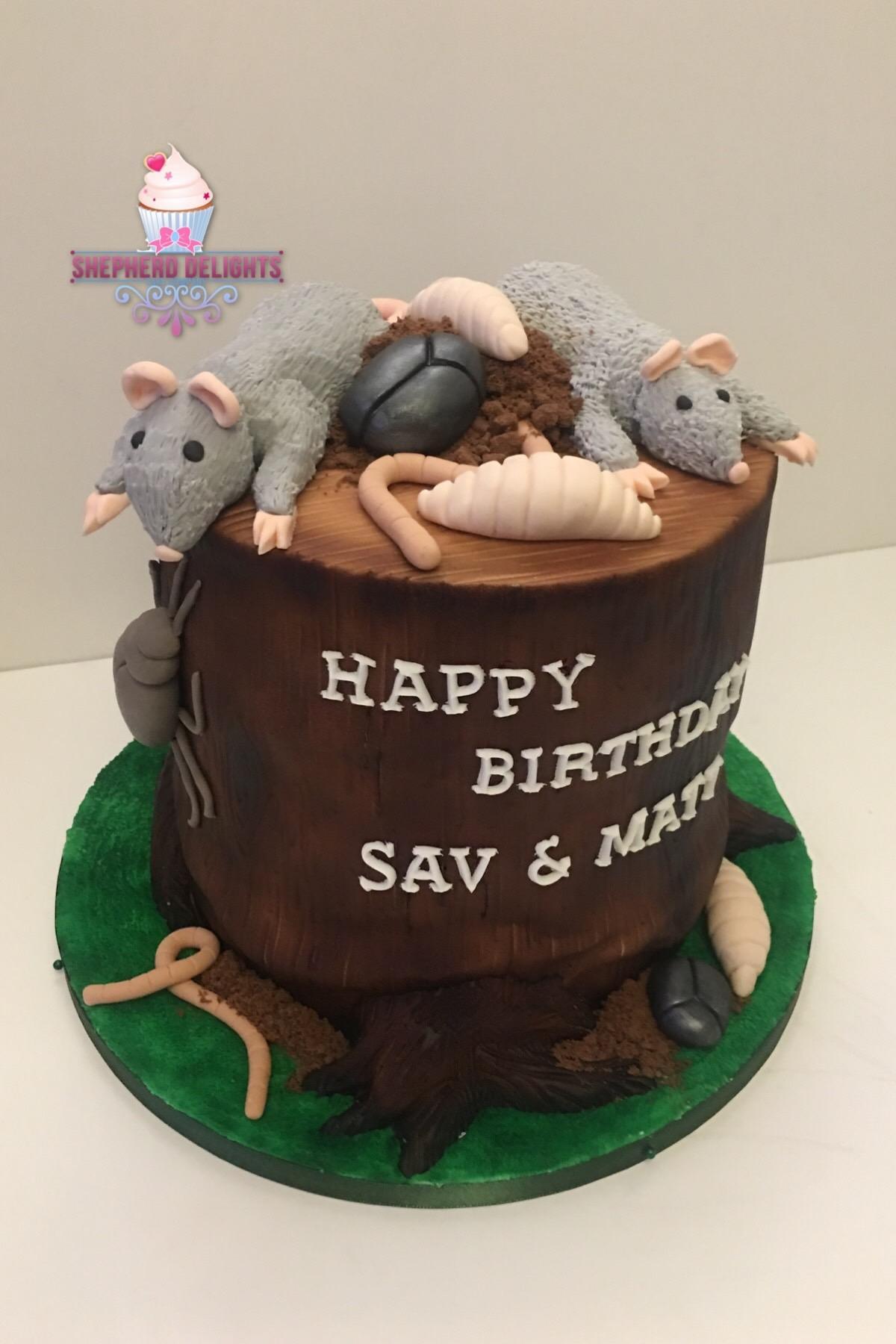 Groovy Tree Stump Bug Novelty Cakes Novelty Birthday Wedding Cakes Funny Birthday Cards Online Overcheapnameinfo